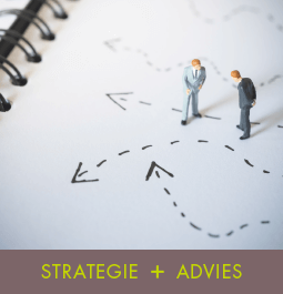 Project Strategie